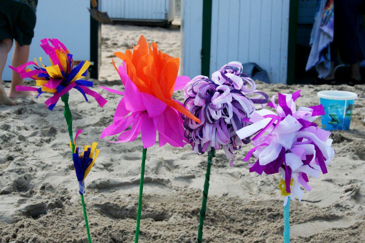 Papieren strandbloemen   © VLIZ (Coppieters)