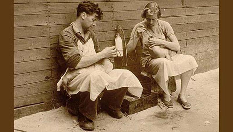 Echtpaar De Haan (eind jaren 50) | © Ecomare